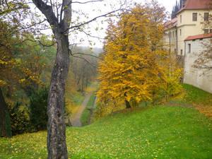 Noyabr-v-Prage