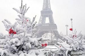 xfp-parisian-festive-treat-2-566x376