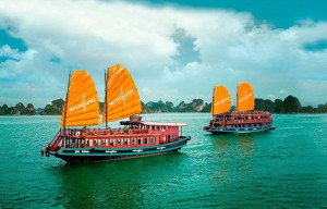 1263х579_Вьетнам